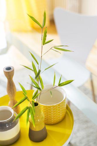 photo d'illustration d'une fenêtre Élisa petit service à thé dans les tons jaunes