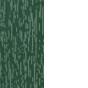 Vert 6005 intérieur blanc